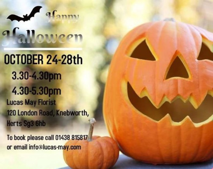 24th Oct: Pumpkin Carving Workshop, Lucas May, Knebworth